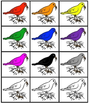 Color Birds