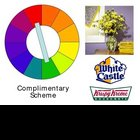 Color Theory: Learning about Color Schemes!