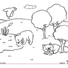Coloring Page: Actions: Animals