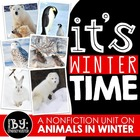 Common Core Aligned: Animals In Winter