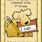 Common Core Skill Ring/Assessment...English Language Arts