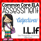 Common Core Standard Language Arts Assessment 1.L.1f (Adjectives)