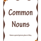 Common & Proper Nouns File Folder Game Owls