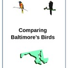 Comparing Baltimore&#039;s Birds-The Oriole and the Raven