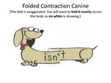 Contractions with Action (Contraction Canines) Do-it-Yourself
