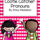 Cootie Catcher - Pronouns