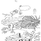 Coral Reef Coloring Sheet - Fun Activity