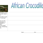 Crocodile Graphic Organizer