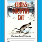 Cross-Country Cat literature unit