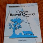 Cry, the Beloved Country: Alternative Assessment--Lots of Ideas!