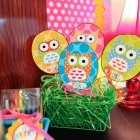 Cute Owl Decor Classroom Decor