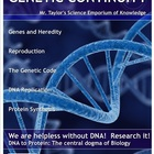 DNA, Mutations, Protein Synthesis, &amp; Genetic Engineering: 