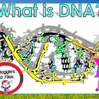 DNA STRUCTURE AND REPLICATION1