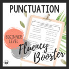 """Daily Fluency"" Booster Pack: {Punctuation}"