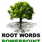 Daily Root Words 97 Words PowerPoint