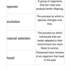 Darwin, Evolution, and Fossils GAME cards