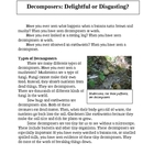 Decomposers Article and Activity