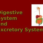 Digestive and Excretory System Overview PowerPoint