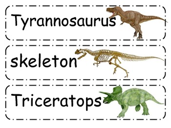 Dinosaur Word Wall Cards