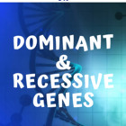 Dominant VS Recessive Genes Powerpoint presentation