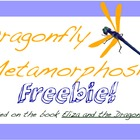 Dragonfly Metamorphosis Freebie Printable
