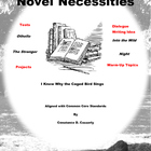 ELA Activities and Assessments:Novel Necessities