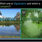 Ecology Abiotic Factors Non-living Unit 2500 Slides and Homework