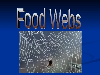Ecology Basics: Foodwebs!