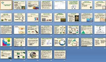 Ecology Ecosystems Environment Unit Bundle - 33 Files