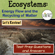 Ecology: Energy Flow and Recycling of Matter Review PPT Q and A