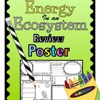 Food Chain, Food Web, Ecosystem Energy Review POSTER Activity