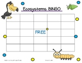 Ecosystems Vocabulary BINGO