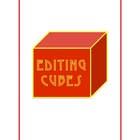 Editing Cubes 4th Grade Writing STAAR Test Prep