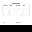Egg Experiment