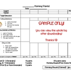Elementary Behavior Plan (Behavior Log/Informal BIP)