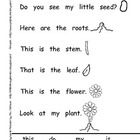 Emergent Student Reader-My Plant