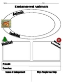 Endangered Animal Activity (Worksheet)