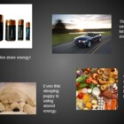 Energy - Potential Kinetic - PowerPoint - Science Forms of
