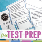 English Standardized Test Review Freebie