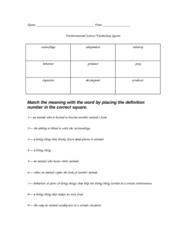 Environment Vocabulary Square