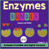Enzymes, Catalysts, Chemical Reactions Complete Unit Teach