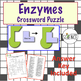 Enzymes, Catalysts and Cellular Chemical Reactions Crosswo