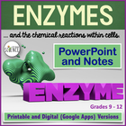 Enzymes / Catalysts and Chemical Reactions PowerPoint and Notes