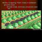 Erosion, Soil Conservation, Agriculture, Farm PowerPoint (