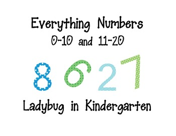 Everything Numbers 0-20