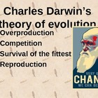 Evidence for Evolution PPT