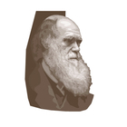 Evolution and Darwin&#039;s Theories Workbook (with assessment)