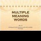 Explanation of Multiple Meaning Words PowerPoint