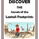 Explore the Secrets of the Laetoli Footprints