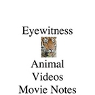Eyewitness movie notes